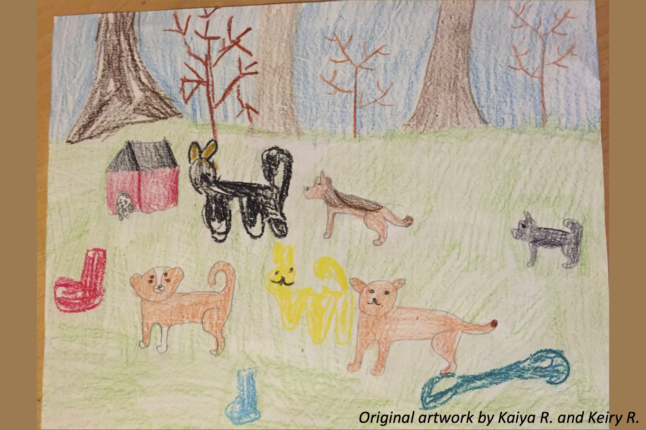 Dogs around the World