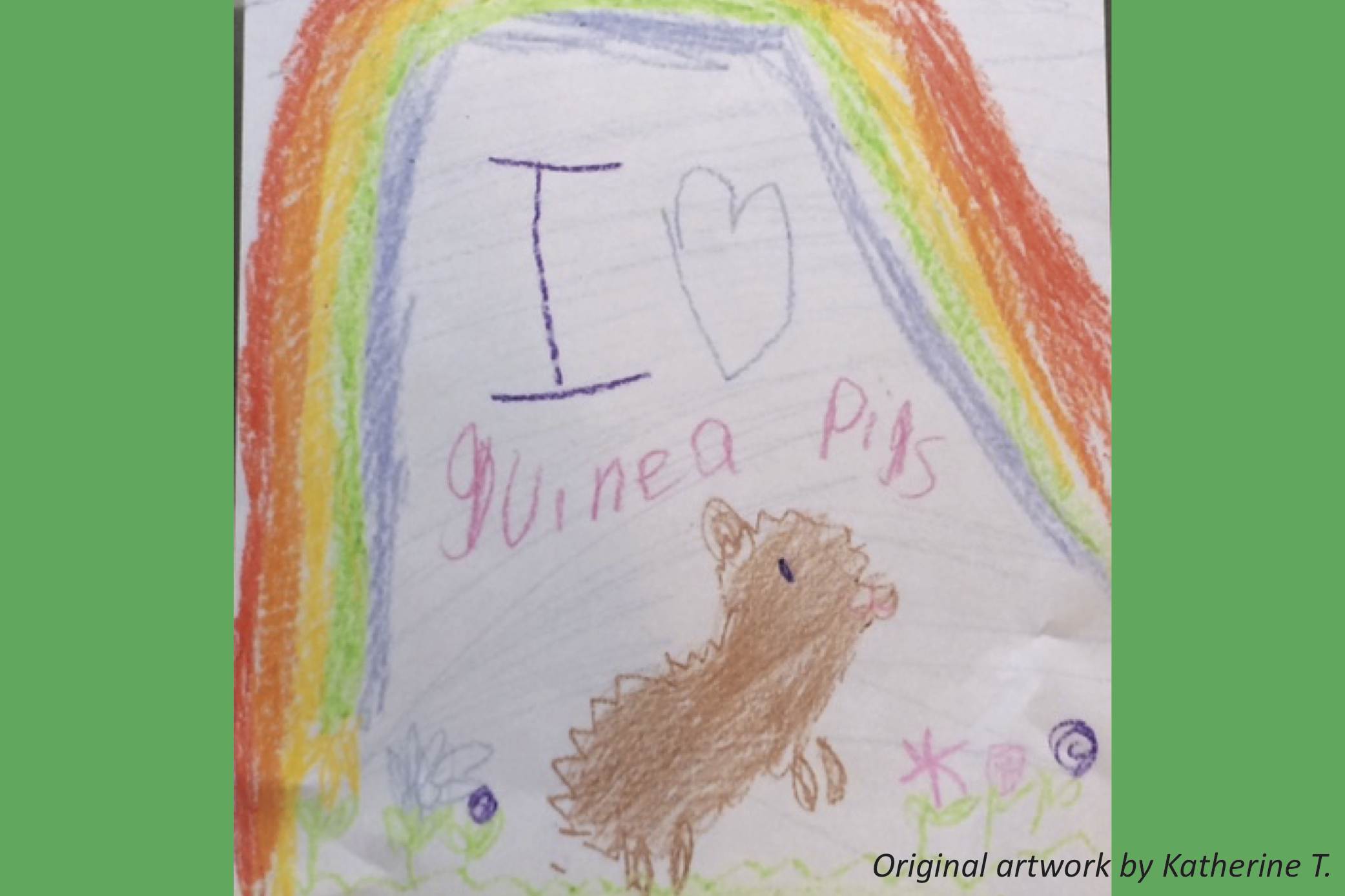 The Greatness of Guinea Pigs