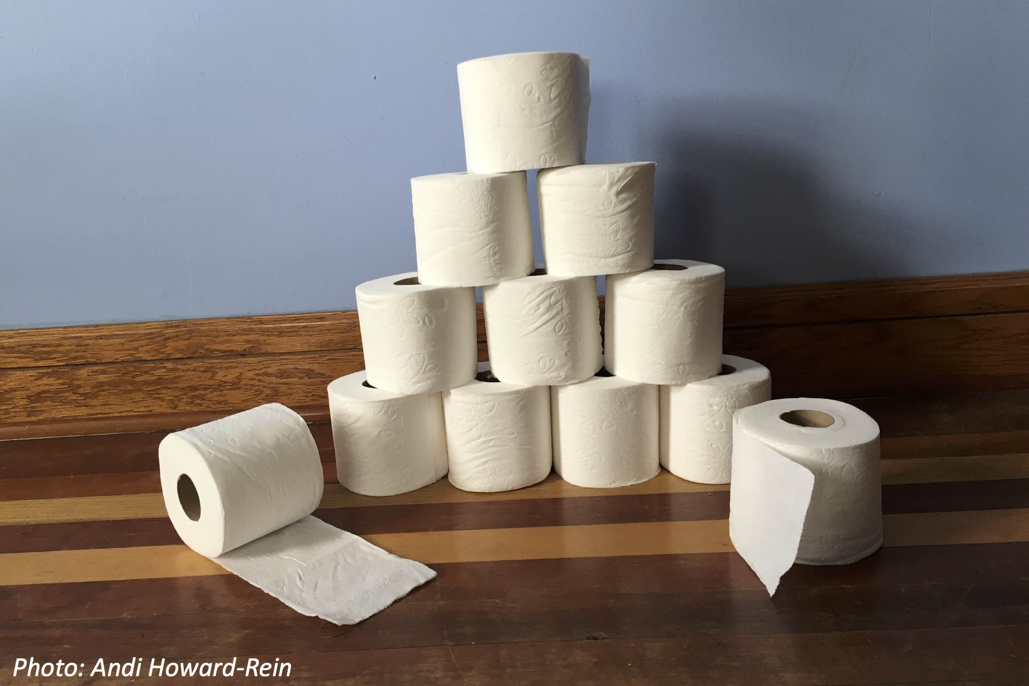 The Truth about Toilet Paper