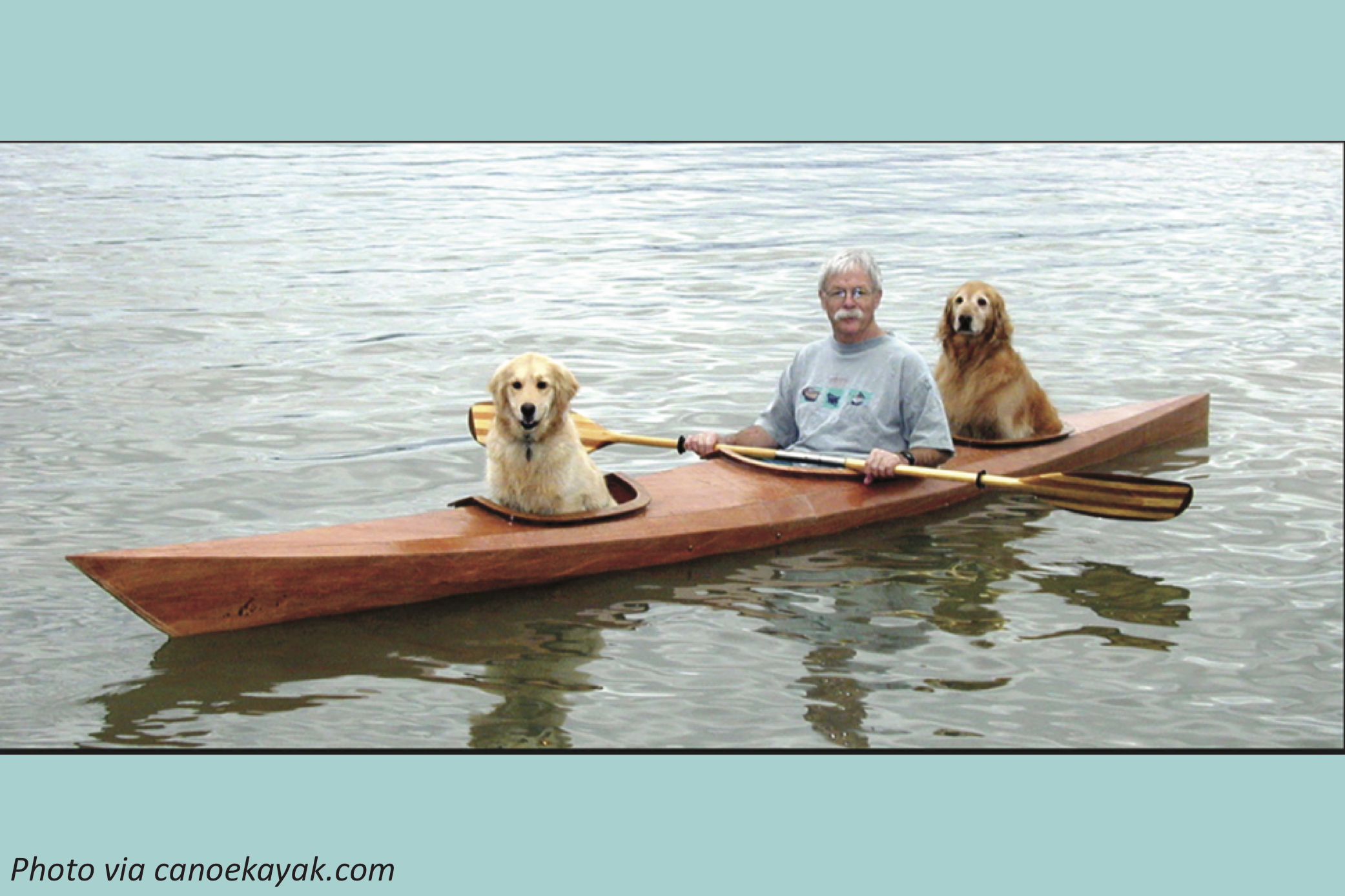 A New Kind of Doggie Paddle
