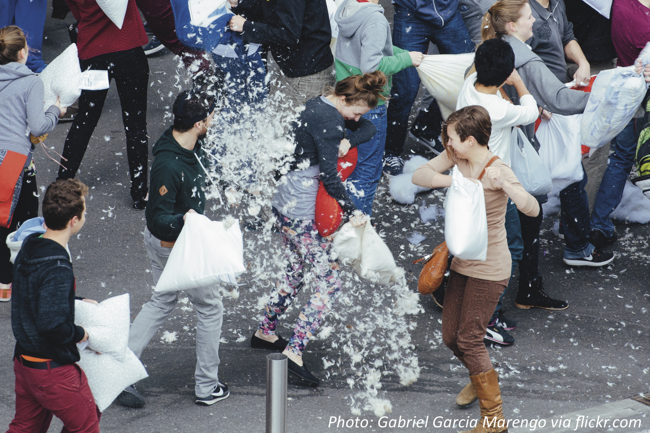 The Great Pillow Fight