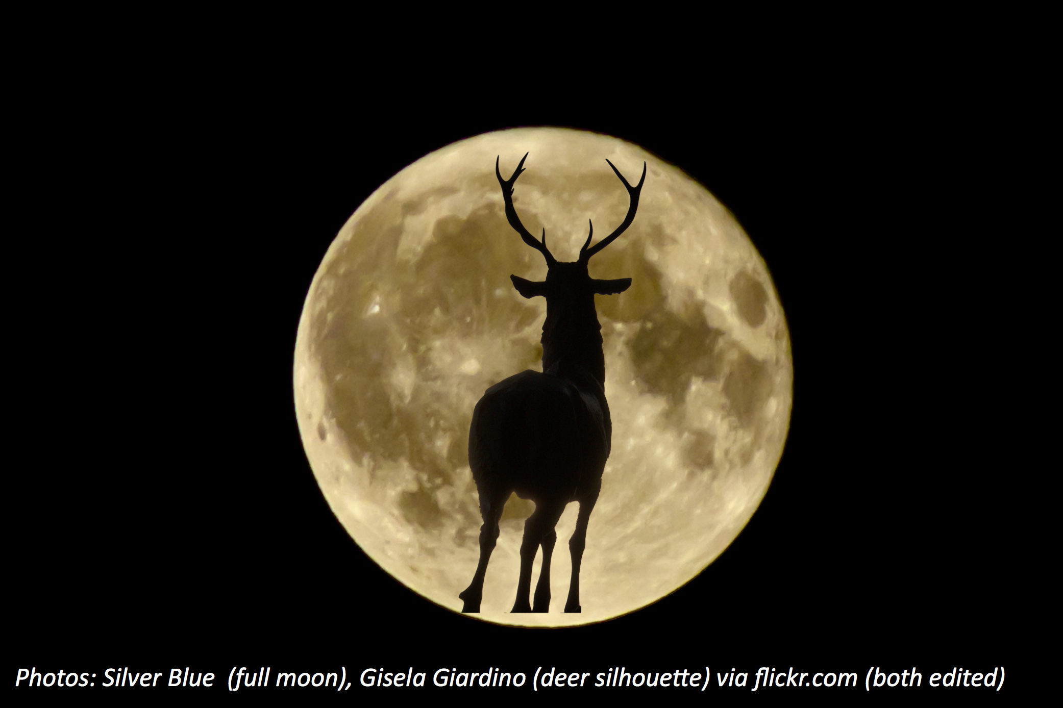 The Buck Moon Stops Here