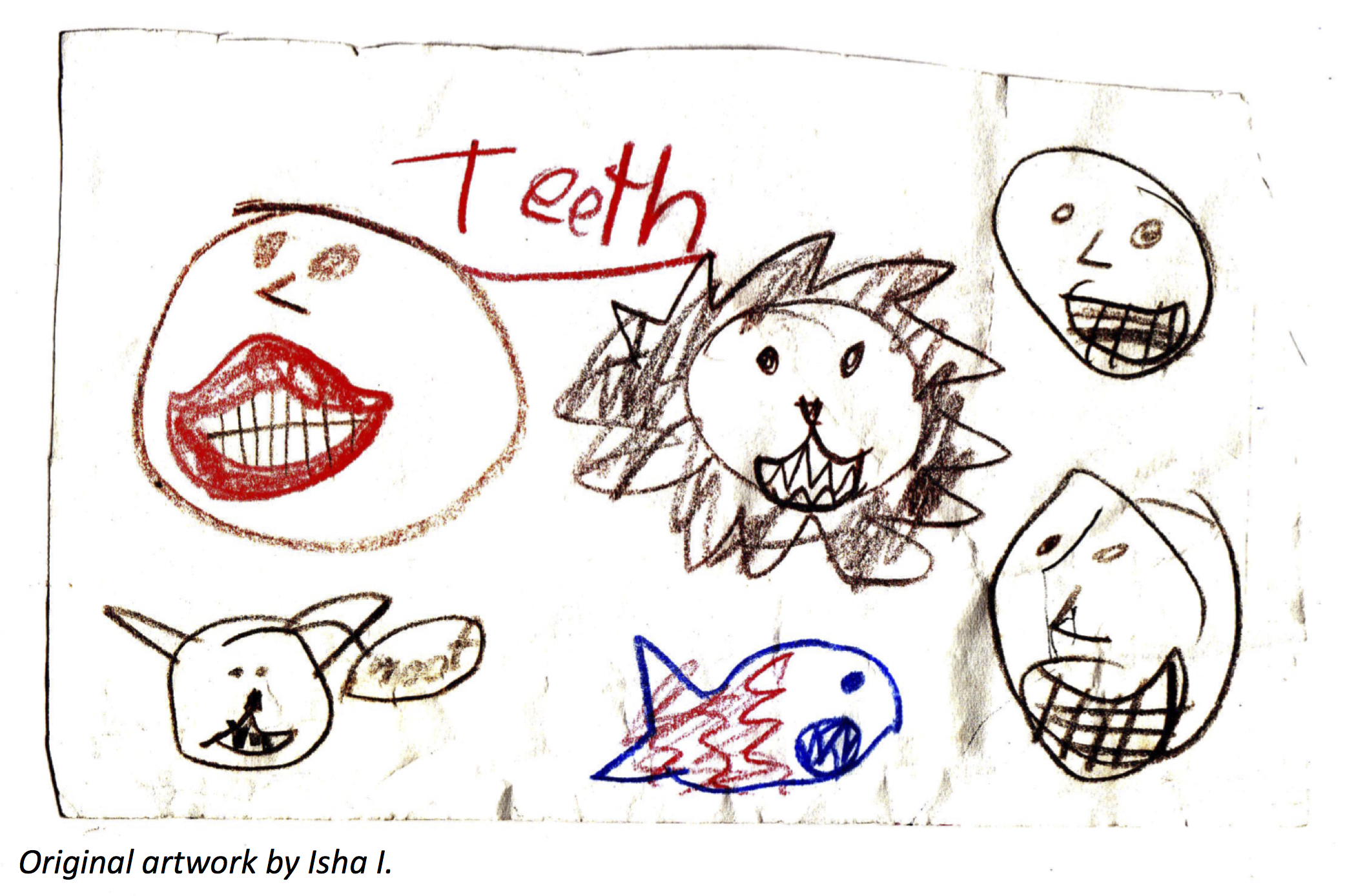 The Toothy Truth