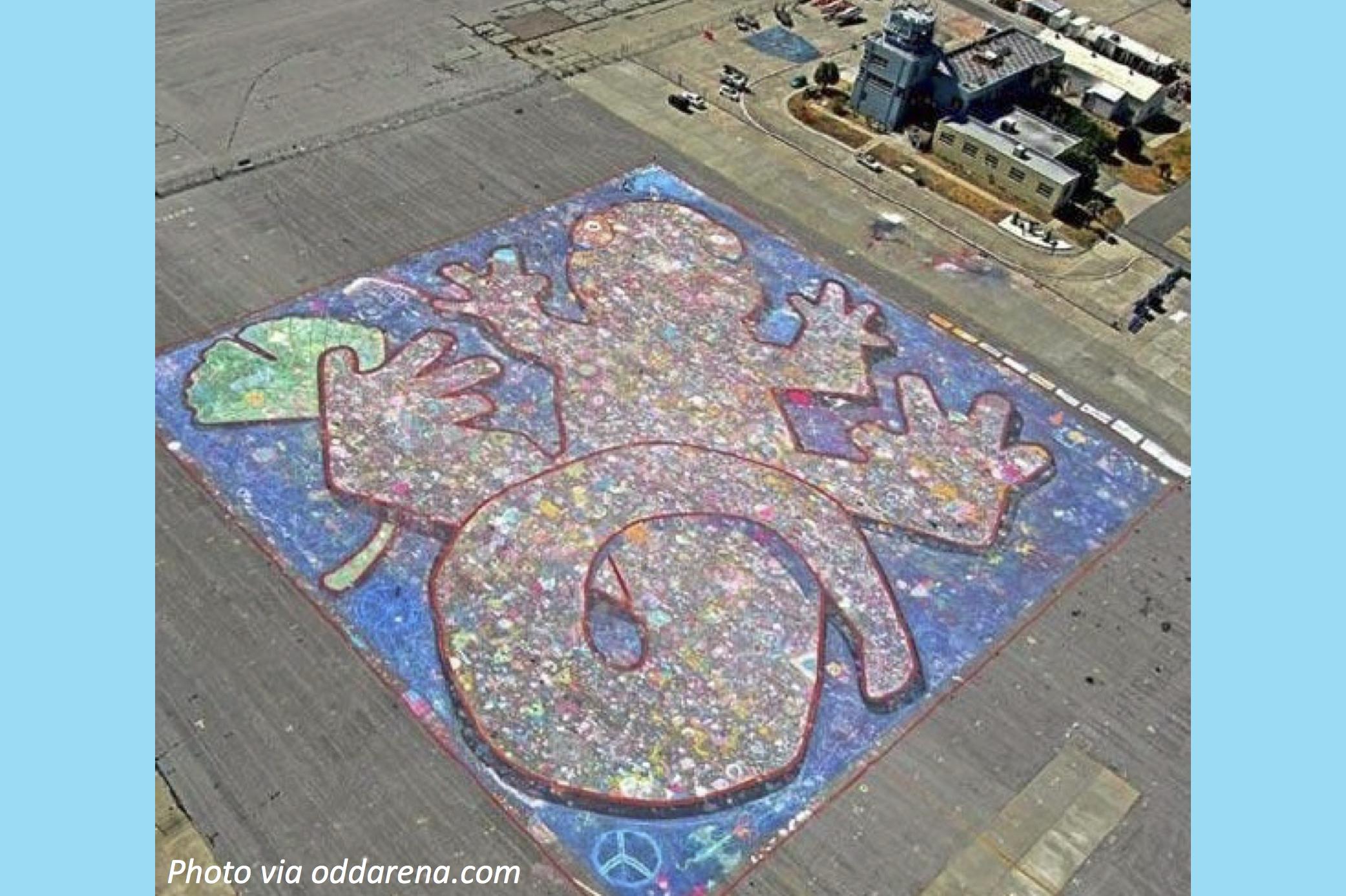 Chalk Art Gone Wild