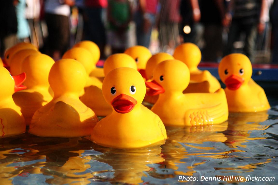When Rubber Duckies Sail the Seas