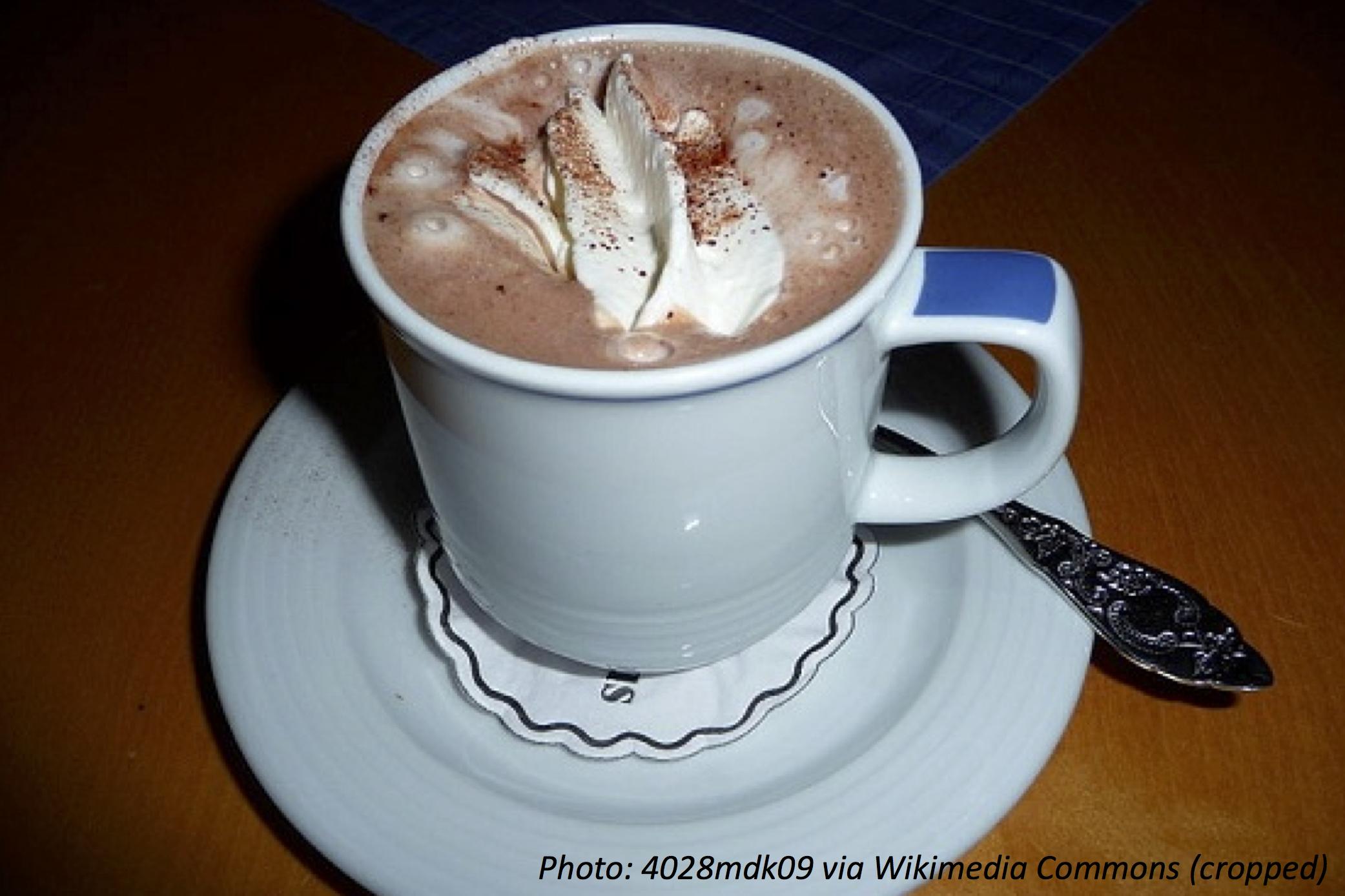 Hot Cocoa, or Hot Chocolate?