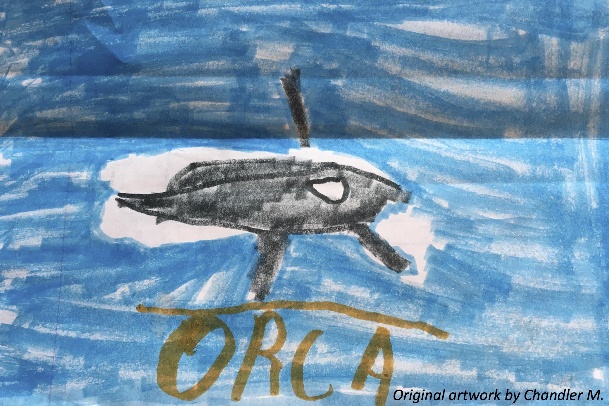 Oceans of Orcas