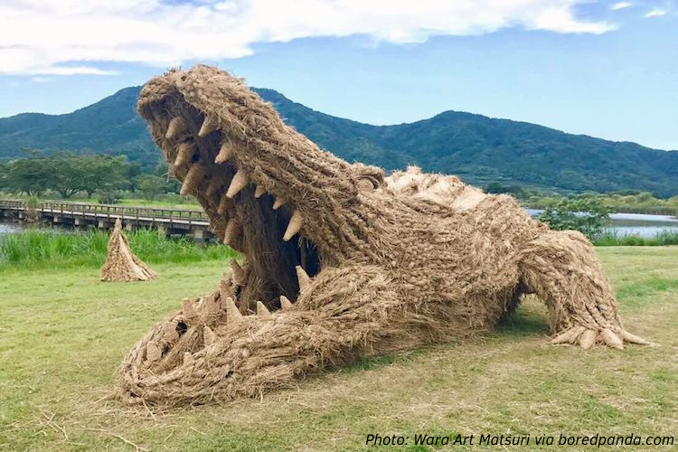 The Straw That Broke the Gator's Back